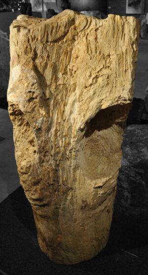 Pierre tombale bois pétrifié 13003
