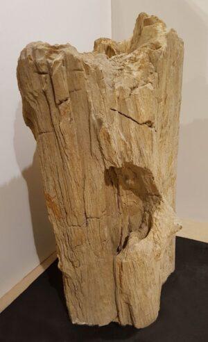 Pierre tombale bois pétrifié 16006