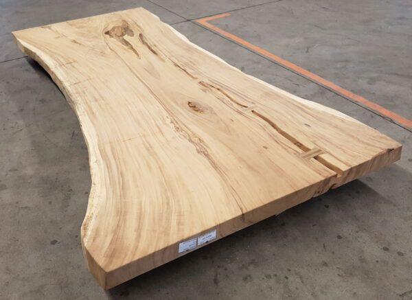 Baumstamm Tisch suar 24534