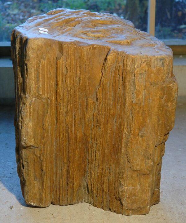 Lápida madera petrificada 1730