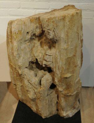 Lápida madera petrificada 15003