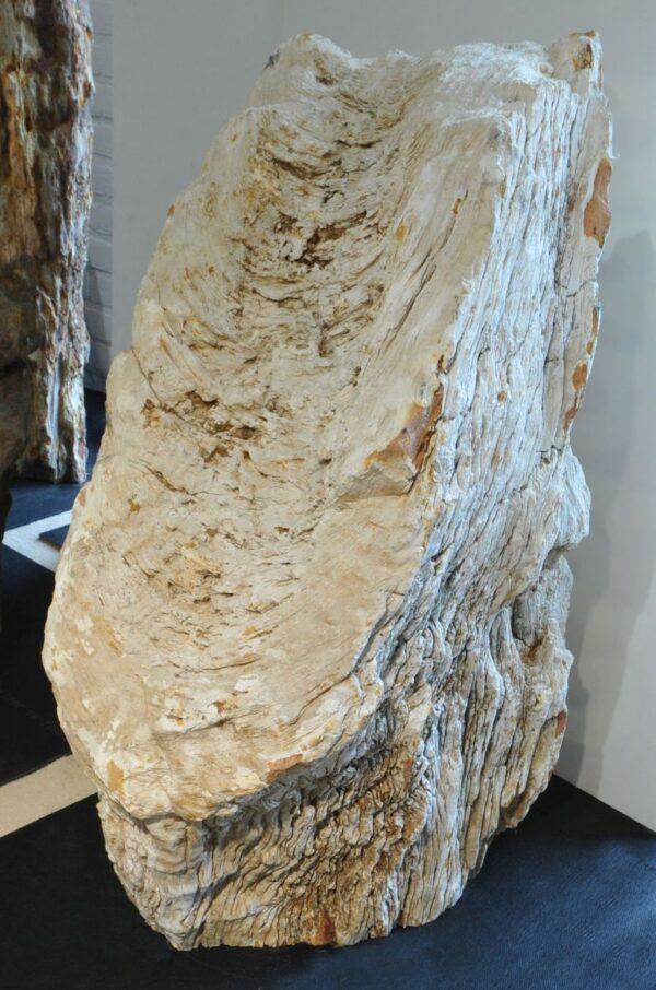 Lápida madera petrificada 19007