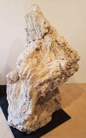 Lápida madera petrificada 19027