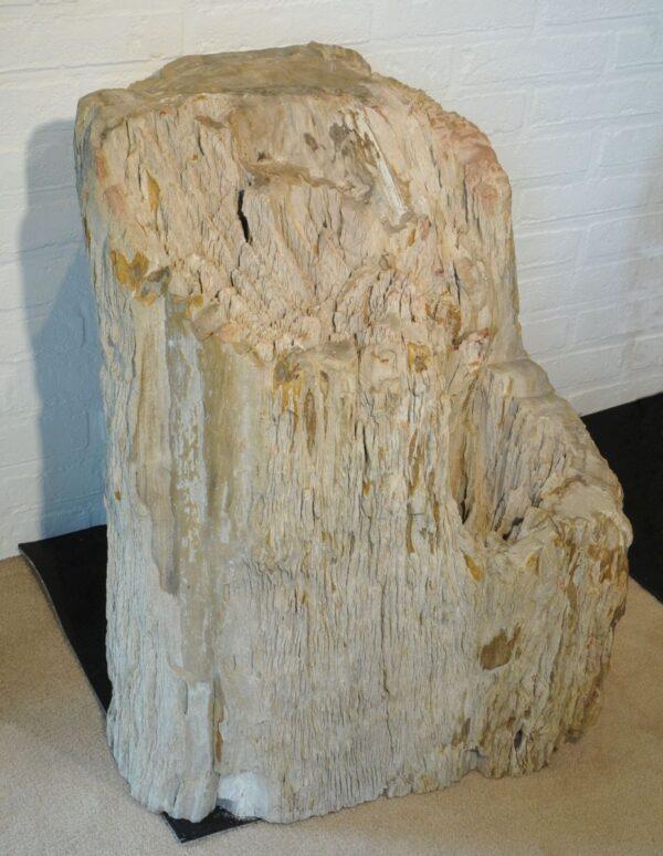 Lápida madera petrificada 19036