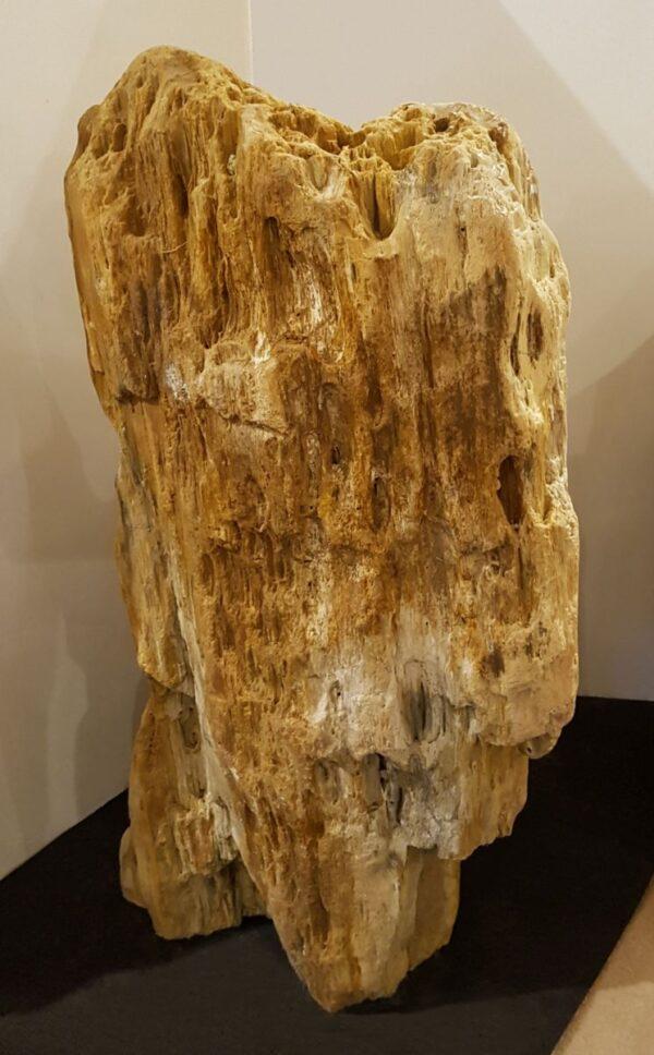 Lápida madera petrificada 21394