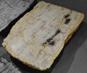 Mesa de centro madera petrificada 12094