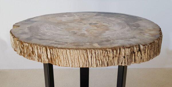 Mesa de centro madera petrificada 30228