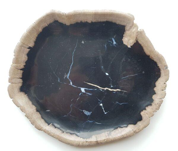 Plato madera petrificada 27811