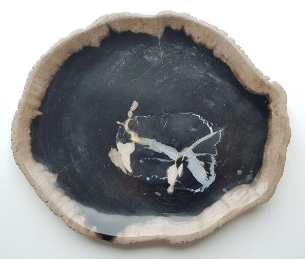 Plato madera petrificada 27819