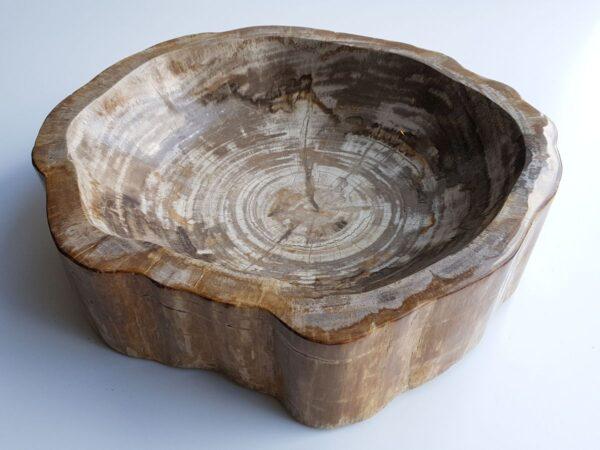 Bol madera petrificada 28046