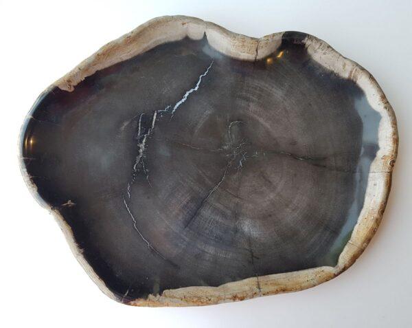 Plato madera petrificada 28099