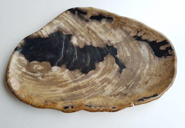 Plato madera petrificada 28139