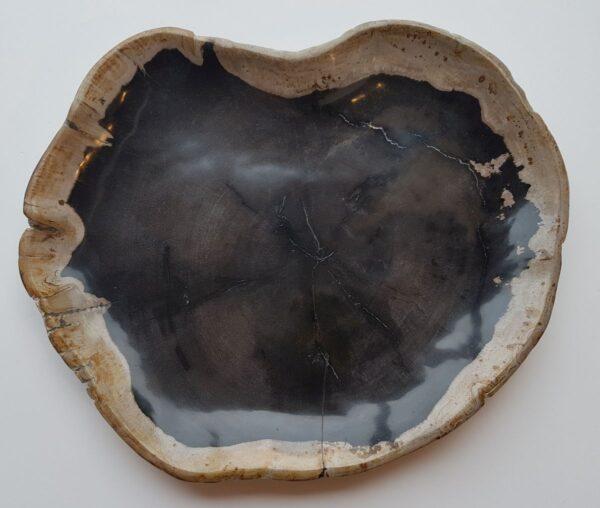 Plato madera petrificada 28164