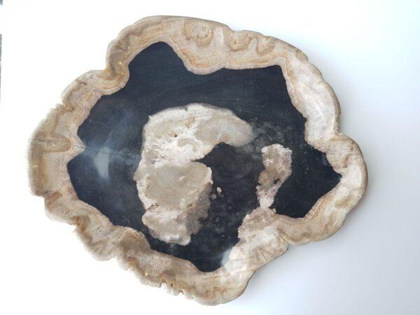 Plato madera petrificada 28285