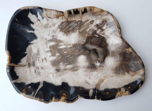 Plato madera petrificada 28316