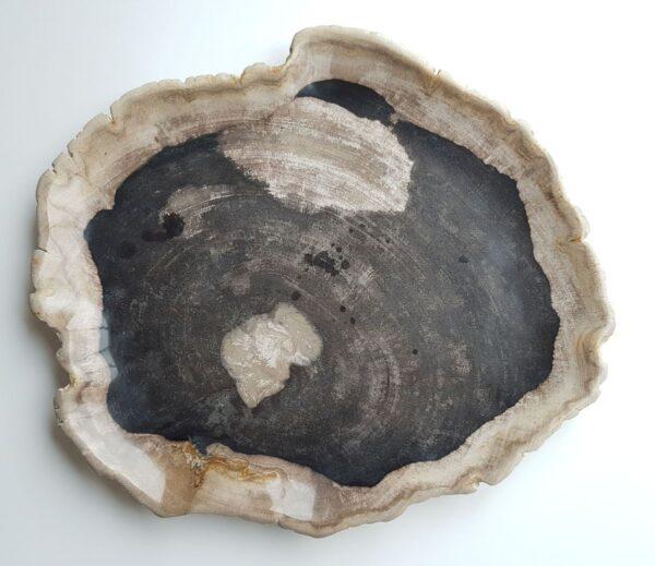 Plato madera petrificada 28331