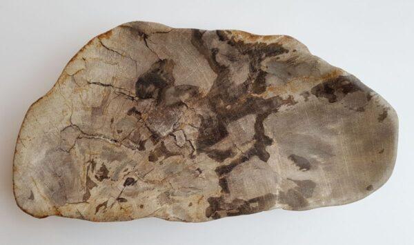 Plato madera petrificada 29328