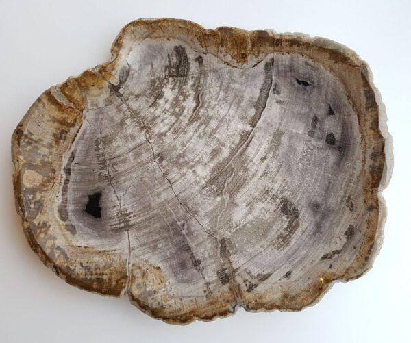 Plato madera petrificada 29330