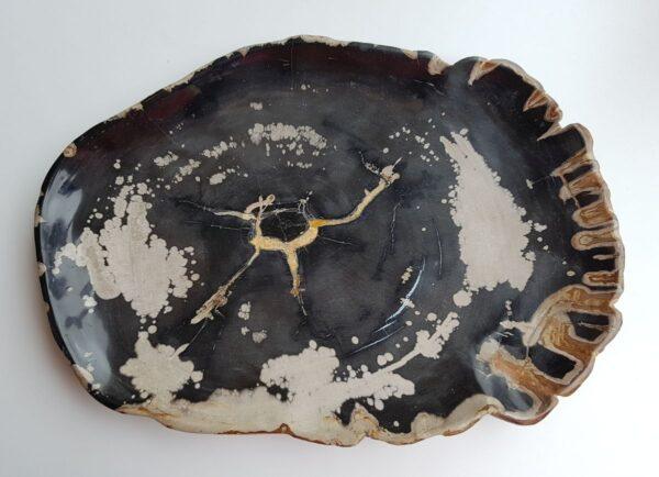 Plato madera petrificada 29375