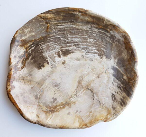 Plato madera petrificada 29401