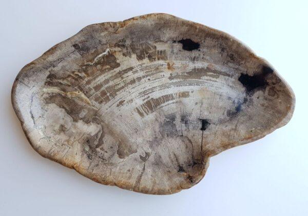 Plato madera petrificada 29435