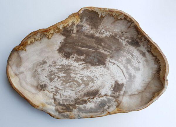 Plato madera petrificada 29442