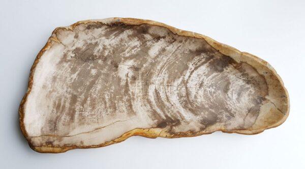 Plato madera petrificada 29449