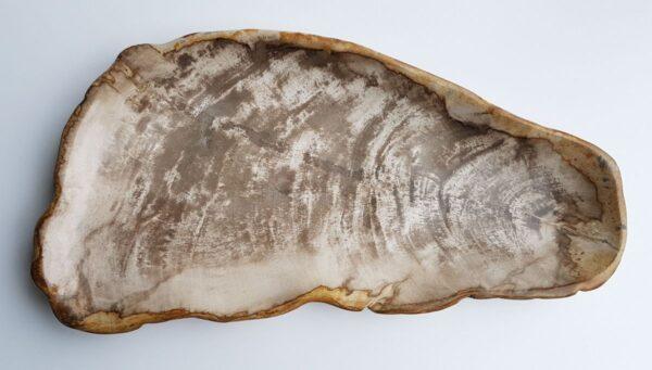 Plato madera petrificada 29450