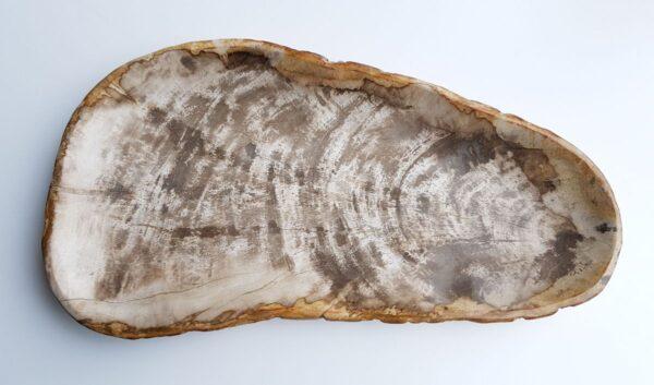 Plato madera petrificada 29451