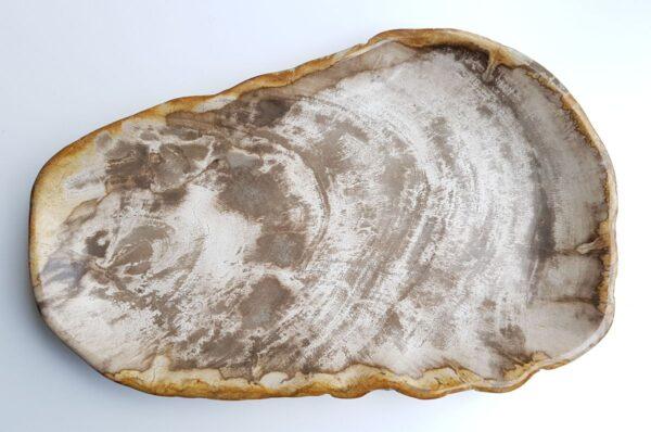 Plato madera petrificada 29456