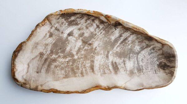 Plato madera petrificada 29458
