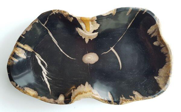 Plato madera petrificada 29503