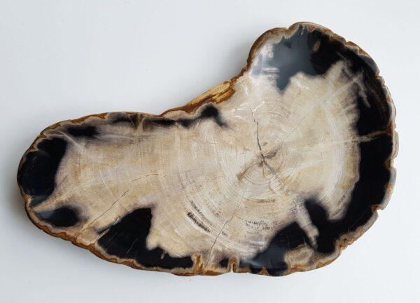 Plato madera petrificada 29508