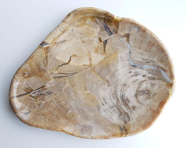 Plato madera petrificada 29512