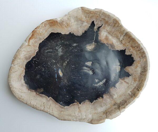 Plato madera petrificada 29515