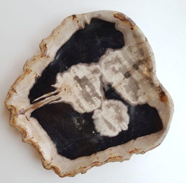 Plato madera petrificada 29529