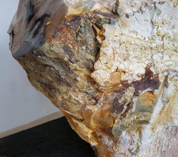 Lapide legno pietrificato 19042