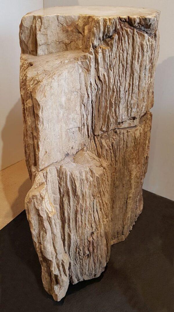 Memorial stone petrified wood 24010