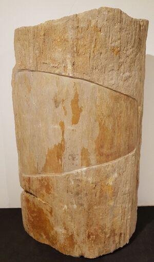 Memorial stone petrified wood 24091