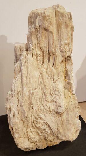 Memorial stone petrified wood 24130