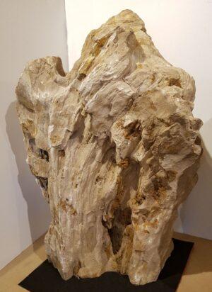 Memorial stone petrified wood 25162