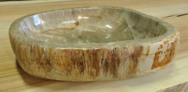 Ciotola legno pietrificato 14014