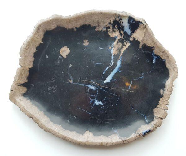 Piatti legno pietrificato 27817