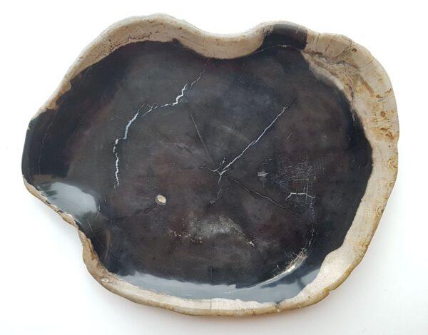 Piatti legno pietrificato 28095