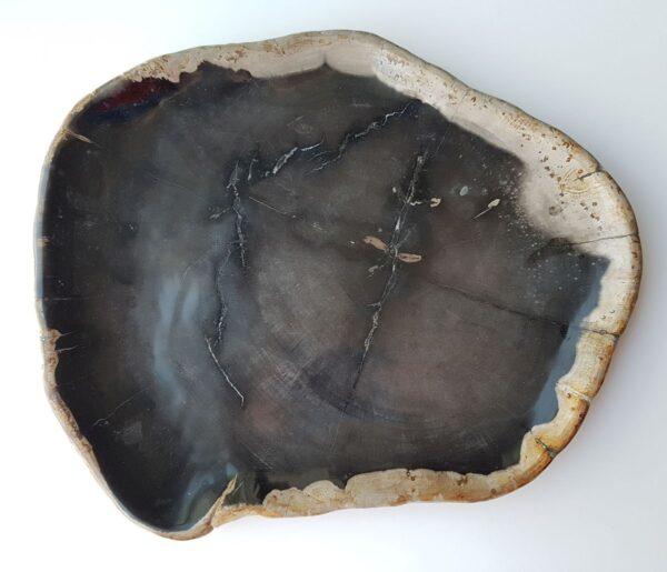 Piatti legno pietrificato 28165