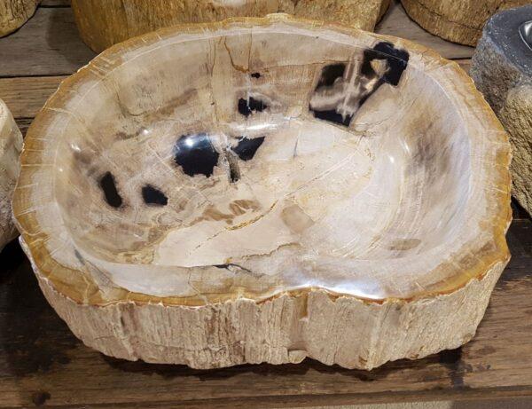 Ciotola legno pietrificato 28357