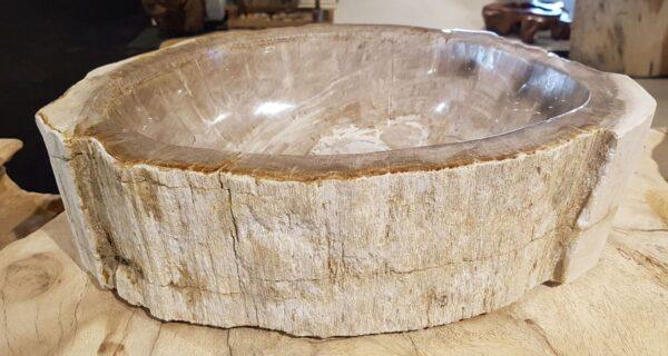 Ciotola legno pietrificato 28741