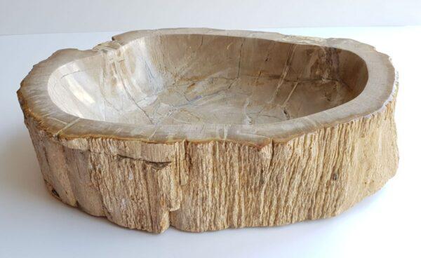 Ciotola legno pietrificato 28743