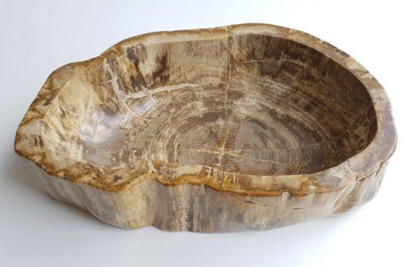 Ciotola legno pietrificato 29311