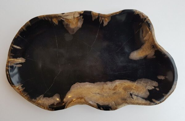 Piatti legno pietrificato 29505